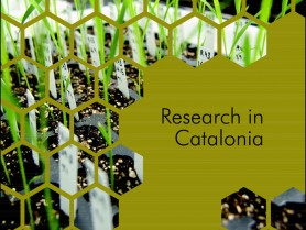 ESOF. Research in Catalonia